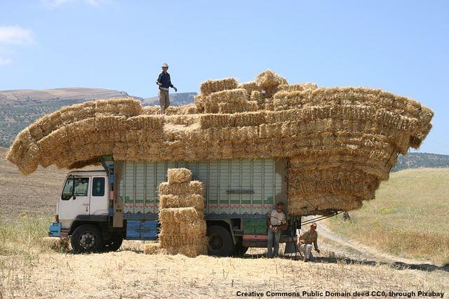 Visto lo stato del parco macchine, la meccanica applicata all'agricoltura ha ampie possibilita'