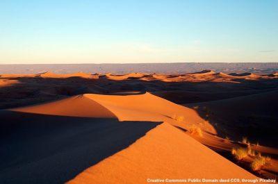 Marocco ed export