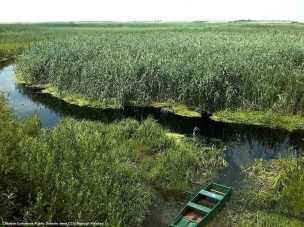 Agroalimentare, internazionalizzazione ed export