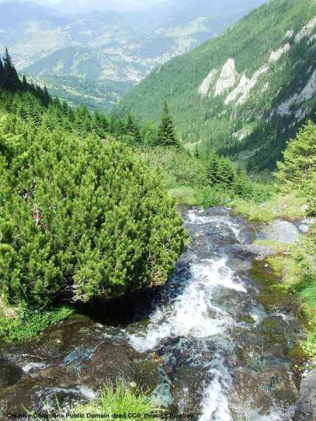 Ambiente e sicurezza idraulica sono importanti in Romania ed un ottimo mercato per le aziende italiane