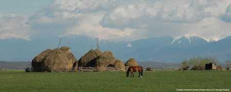 L'agricoltura rumena ha bisogno di macchinari agricoli moderni