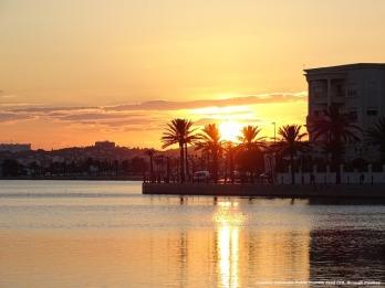 Rischi d'impresa in Tunisia