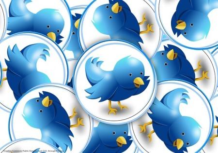 Twitter come esperimento sulla UE