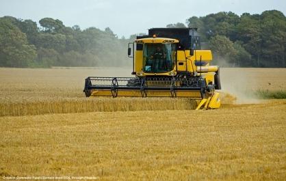 Export del grano – necessita' della meccanica in agricoltura