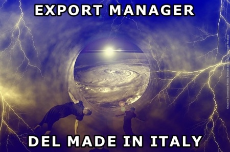 Export manager del made in Italy