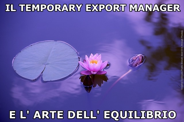 Il temporary export manager e l'arte dell'equilibrio
