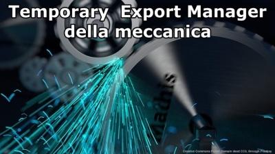 Temporary export manager della meccanica