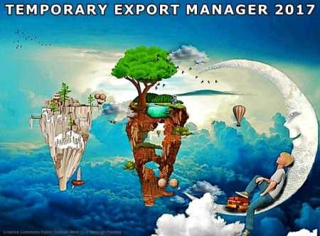 Temporary export manager