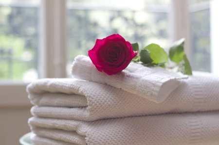 Una rosa rossa. Spesso il turista cerca una vacanza speciale, cosa di meglio di emozioni e terme?