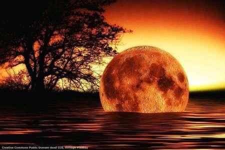 Un export manager non dovrebbe cercare la luna, ma analizzare tutti i rischi di internazionalizzazione